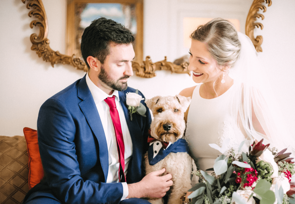 Bride and groom look lovingly between them at their dog, which is wearing a cut vest. The bride has a bouquet of eucalyptus, and a white sleeveless dress. The froom has a cranberry tie and blue jacket. The dog is pretty darn cute.